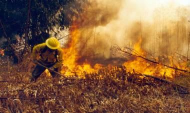 Recomendaciones de Protección Ciudadana para prevención y control de incendios