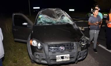 Ruta 249: Atropelló un caballo antes de ingresar a la ciudad