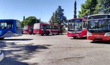 Paro de UTA: Sin servicio de líneas de colectivos este feriado