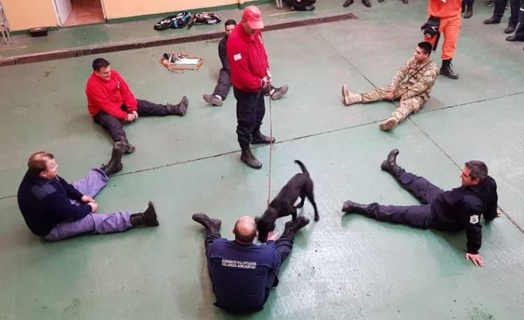 Se realizó un curso de búsqueda y rescate K9