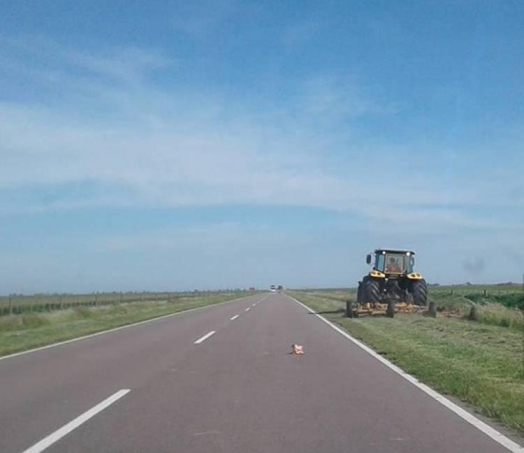 Pehuen Co: Se están realizando mantenimiento en las banquinas de la ruta 113