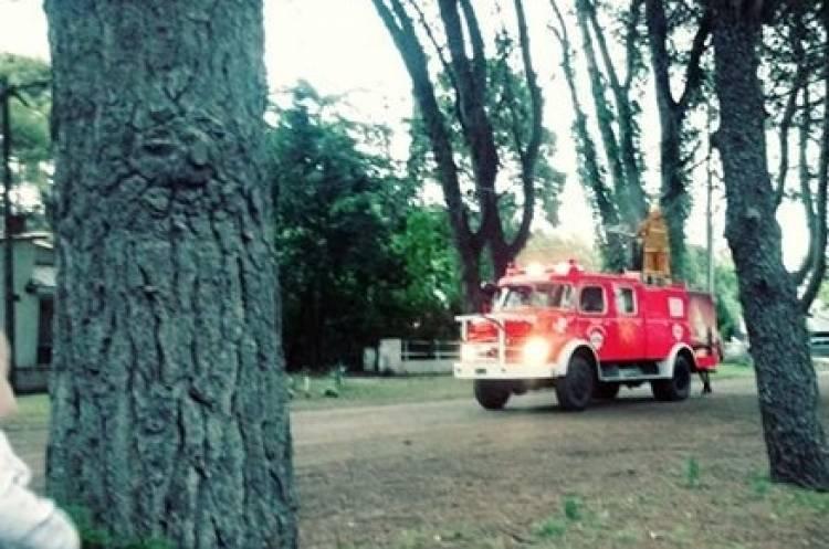 Pehuen Co: Tras la caída de un rayo, hubo un principio de incendio en un pino