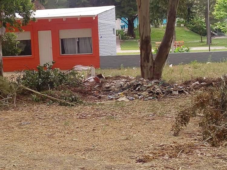 Pehuen Co: Vecinos indignados por la falta de limpieza en las calles
