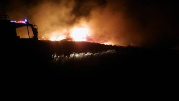 Pehuen Co: Bomberos Voluntarios debieron sofocar el incendio de un campo