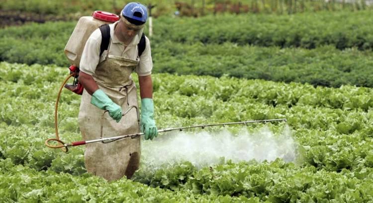 Bien Común pide evitar el uso de agroquímicos cerca de escuelas