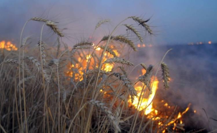Rige una alerta por incendios y piden extremar los cuidados para evitarlos
