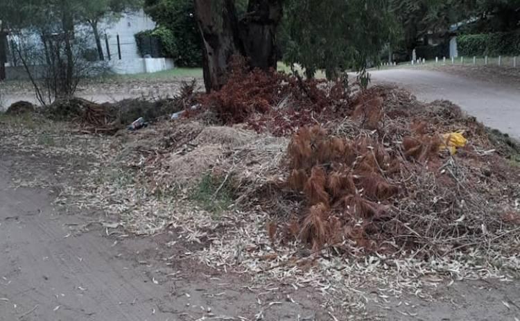 Pehuen Co: Vecinos reclaman la falta de atención de parte del Municipio en la Villa Balnearia
