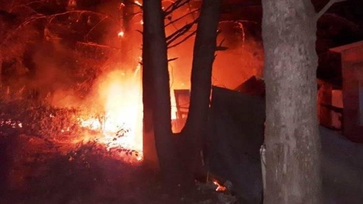 Pehuen Co: Murieron 2 perros rottweiler en el incendio de un galpón