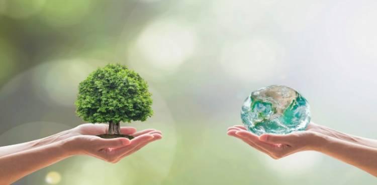 Actividades de Protección Ciudadana en la Semana del Medioambiente