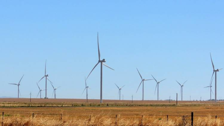 Pampa Energía podría inaugurar el parque eólico el próximo martes