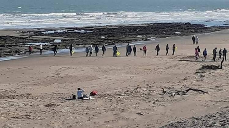 Se realizó una limpieza y censo en la costa de Pehuen Co