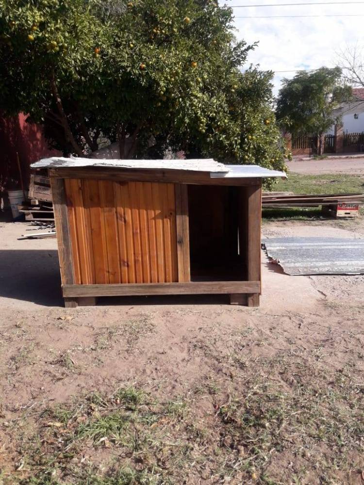 Diferentes ONG piden materiales para construir refugios para perros callejeros