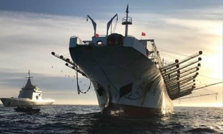 Luego de pagar multas, partieron los buques que pescaban ilegalmente en el Mar Argentino