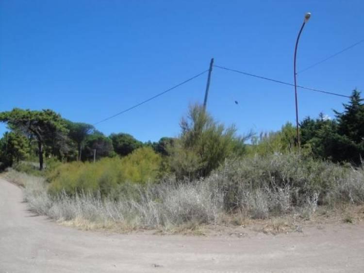 Ignacio Torrontegui habló sobre los terrenos de Pehuen Co que irán a remate