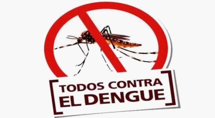 Consejos de Protección Ciudadana y Medioambiente para prevenir el dengue