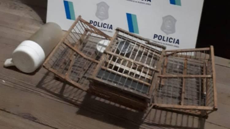 Detuvieron a un menor por saltar un paredón y robar una jaula de pájaros