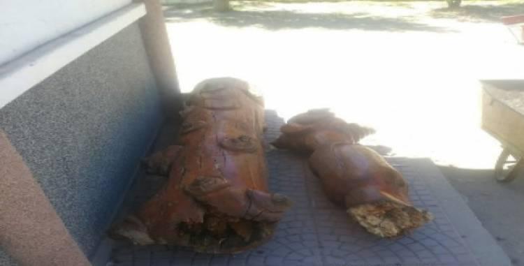 Hechos vandálicos en la Plaza General Belgrano