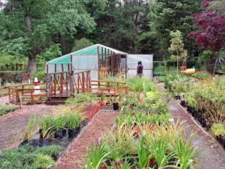 El Municipio de Coronel Rosales hizo la reparación completa del invernadero del Vivero de Pehuen Co