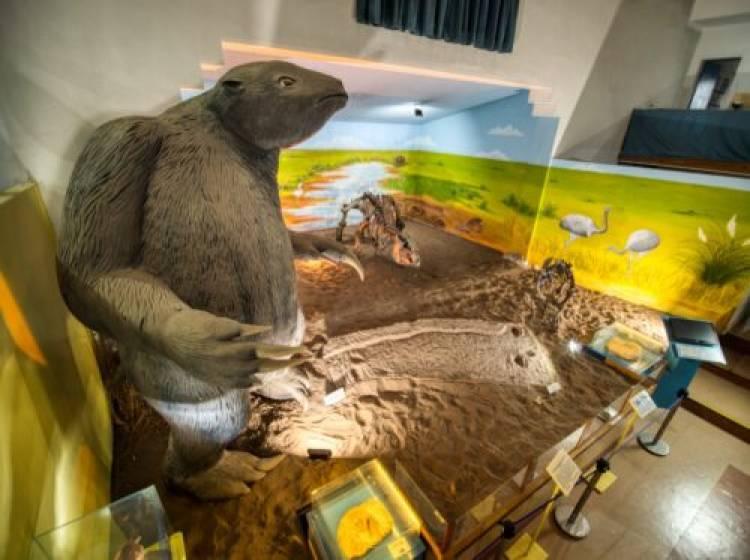 El Museo Municipal Carlos Darwin volverá a abrir sus puertas al público el 20 de septiembre 2021